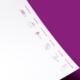 Neckarmedia Corporate Design für Frauenarztpraxis Dr. Birl